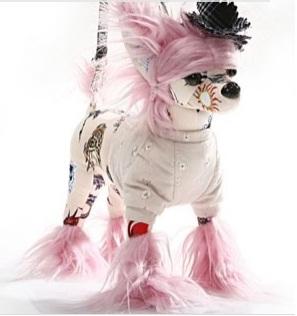 perro-bolso-1
