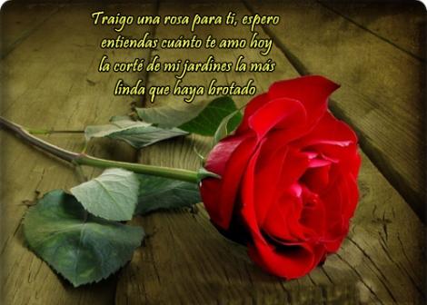 imagenes-de-rosas-rojas-con-frases-de-amor-postales-de-rosas-para-el-amor-enviar-en-facebook1