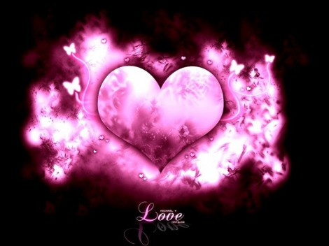 Amor-Purpura_800