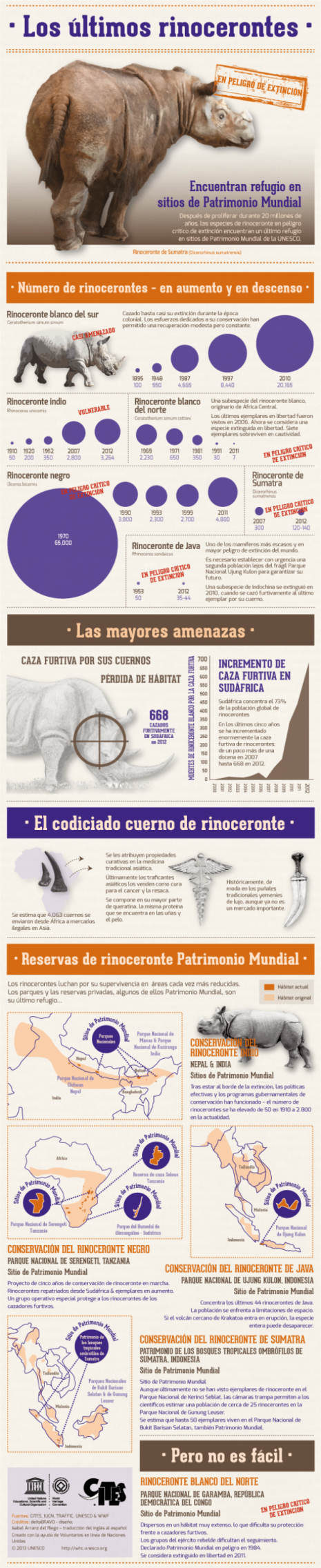 infografia_los_ultimos_rinocerontes