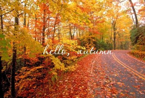 hello-autumn-camera-5