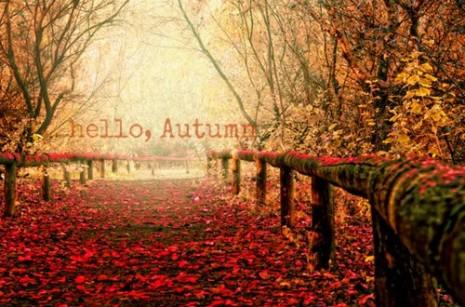 hello-autumn-tumblr-1