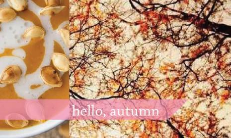 tremen_hello-autumn2