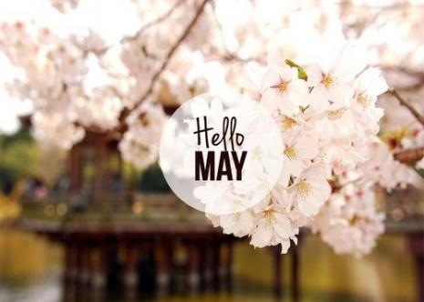 hello-may-2015