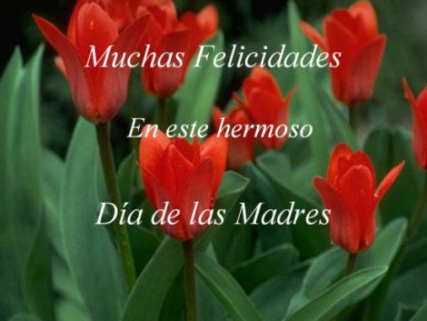 Descargar Lindas Tarjetas Para El Día De La Madre En Mayo Para Las