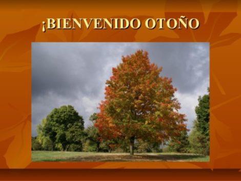 otonola-llegada-del-otoo-9-638