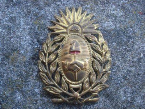 escudo-gorra-militar-ejercito-argentino-insignia-1973-15740-MLA20107870317_062014-F