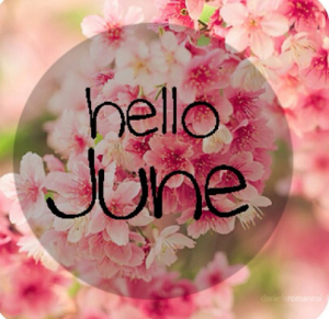 juniocymera_20130602_103427