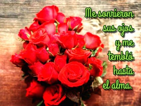 Imagenes-De-Flores-Naturales-2