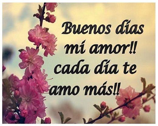 Buenos Dias Mi Amor En Imagenes Con Frases Bonitas